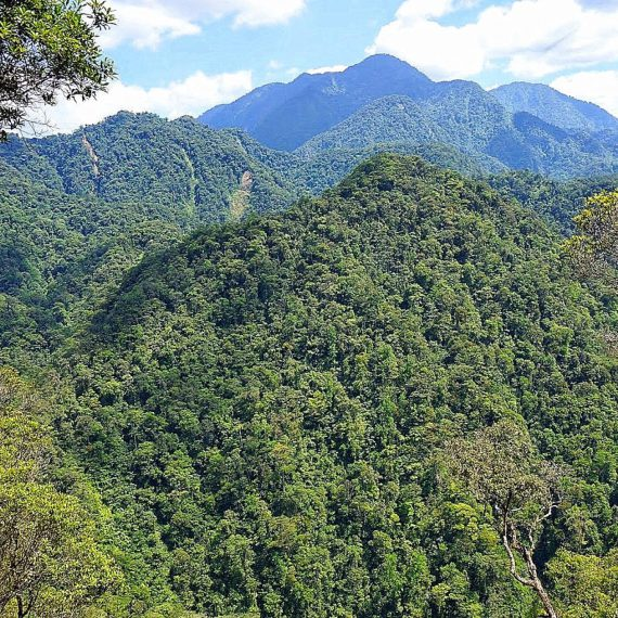 Hike in Cerro Azul Meámbar National Park