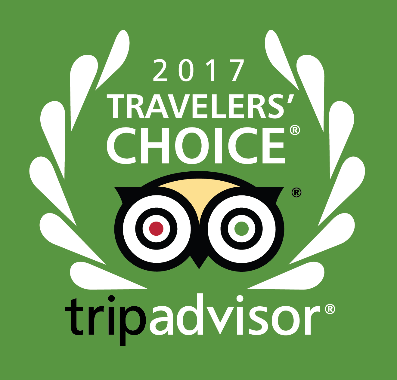 Traveler's Choice Award 2017