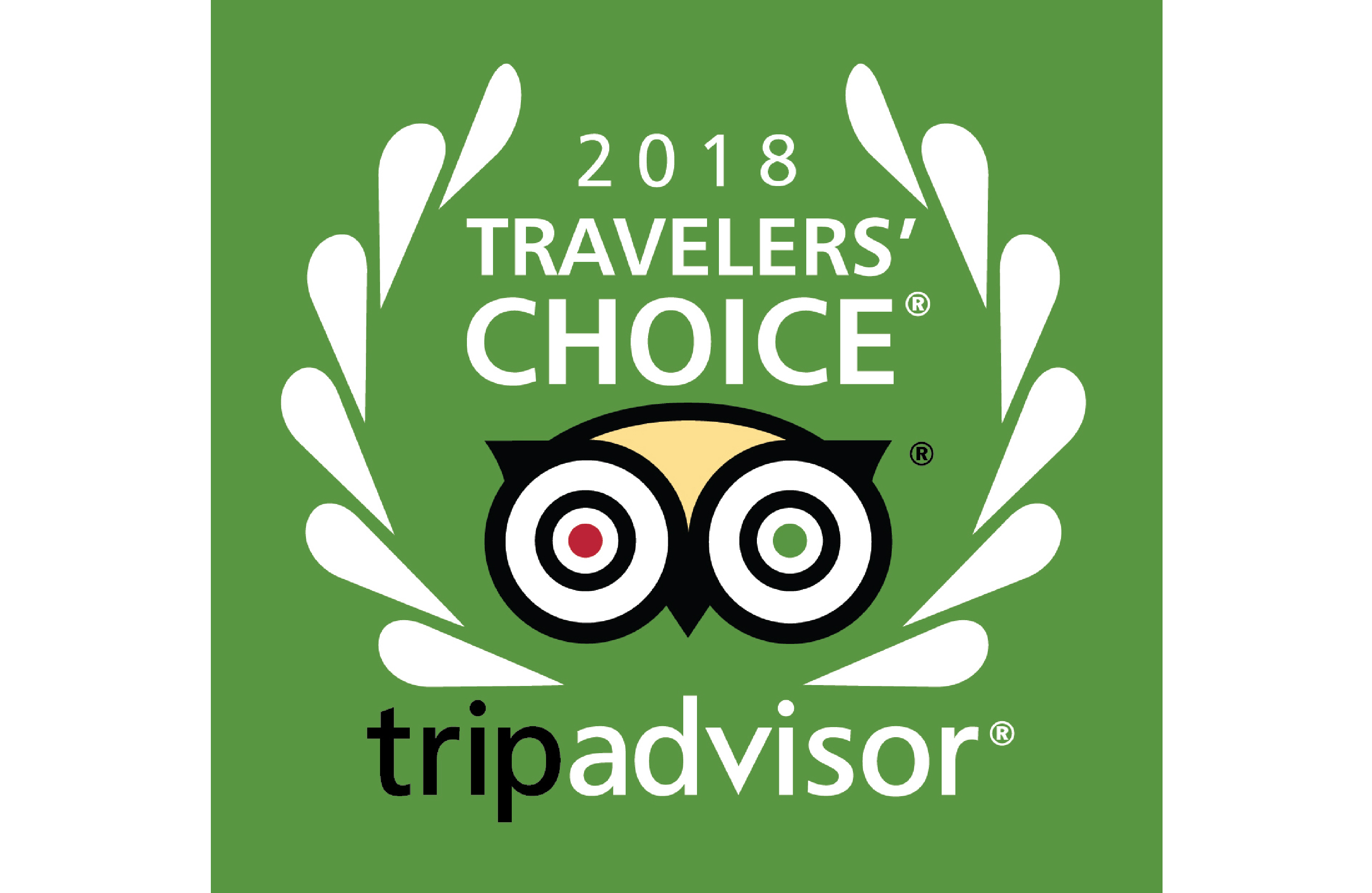 Traveler's Choice Award 2018